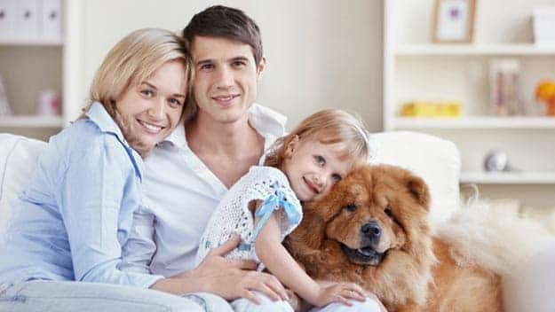 Wills & Trusts dog-young-family Direct Wills Shropshire